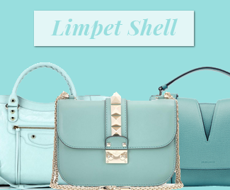 limpet shell